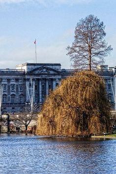 London - Buckingham Palace from St.James's Park