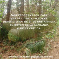 UCDM #uncursodemilagros #espiritualidad #leccionesdevida #reprogramaciónmental #meditación #elcaminoderegresoacasa #clubdelaluz
