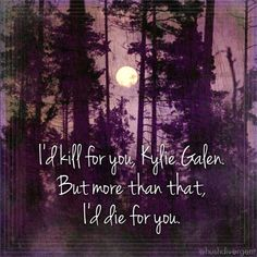 Lucas for Kylie Shadow Falls series c.c hunter