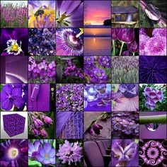 """""""all things purple"""" mosaic"""
