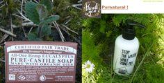 Castile Soap Uses, Shampoo, Pure Products, Bottle, Soap, Stuff Stuff, Flask