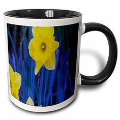 Jos Fauxtographee Realistic - A Yellow Daffodil on a Blue and Green Leafy Backdrop - 11oz Two-Tone Black Mug (mug_48433_4) 3dRose http://www.amazon.com/dp/B01352DNI0/ref=cm_sw_r_pi_dp_YItYvb0AD3RRV