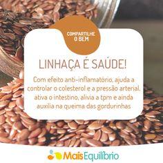 Adicione a semente de linhaça no seu cardápio e tenha mais saúde! http://maisequilibrio.com.br/os-beneficios-da-semente-de-linhaca-2-1-1-82.html