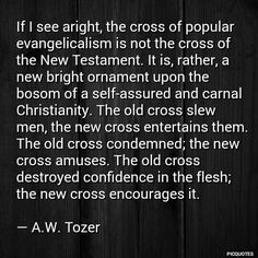 AW Tozer Godly Man Quotes, Men Quotes, Watchers On The Wall, Ministry Quotes, Christian Apologetics, Reformed Theology, Christian Memes, Hard Truth, Scripture Quotes