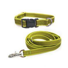 Leash and Collar Dog Walking Set  //waggo.com//
