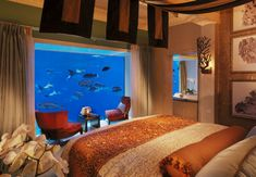 See eye to eye with tropical fish and watch sea turtles whiz by your window. We have five breathtaking underwater hotels that let you explore below the surface without even leaving your bed.