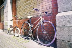 Ireland's Premier Online Bicycle Register: Stolen Bike - Raleigh Ladies Recovered by Store Street Gardaí Station, and returned to owner Premier Online, Ireland, Bicycle, Street, Lady, Bike, Bicycle Kick, Bicycles, Irish