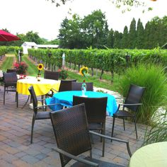 Cape may winery and vineyard Wednesday night dinner is fantastic!!