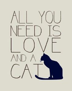 All You Need is Love and a Cat Quote Print Cat Lovers Poster Custom Colors and Size Modern Typopgraphy Art Crazy Cat Lady, Crazy Cats, I Love Cats, Cute Kittens, Cats And Kittens, Animal Gato, Photo Chat, Cat Quotes, All About Cats