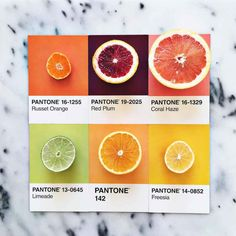 Designer Pairs Different Foods with Their Pantone Swatch Colours (Top Design Color Schemes) Pantone Colour Palettes, Purple Color Palettes, Nature Color Palette, Colour Pallete, Pantone Color, Color Schemes, Pink Color, Pantone Swatches, Color Swatches