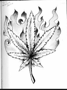 Smoking is only one way to enjoy marijuana! You will love it more in edibles you make easily yourself. This book has great recipes for easy marijuana oil, delicious Cannabis Chocolates, and tasty Dragon Teeth Mints: MARIJUANA - Guide to Buying, Growing, Harvesting, and Making Medical Marijuana Oil and Delicious Candies to Treat Pain and Ailments by Mary Bendis, Second Edition. Only 2.99. www.muzzymemo.com