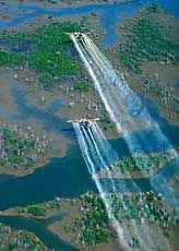 AGENT ORANGE photos-spraying defoliant in Viet Nam and surrounding countries. Vietnam History, Vietnam War Photos, History Timeline, History Photos, Art History, Us Military, Military History, Once A Marine, American Veterans