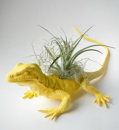 Yellow Lizard Planter  Mini Modern Art Air Plant by CoastalMoss, $13.00