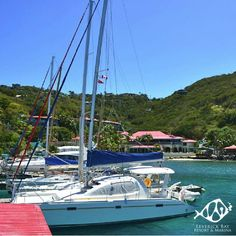 Relax at #LeverickBayResort while enjoying these amazing view. #BVI #View #Beauty #Travel #Vacation #Paradise #Fun