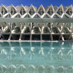 8 Reasons to Visit Valencia