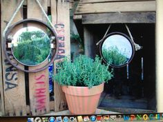 Espejo  En una tarde imaginativa
