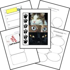 Free Cats Lapbook and Unit Study