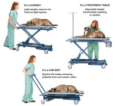 Versa-Lift - Veterinary Multi-Purpose Electric Lift - One electric lift that does 3 jobs.