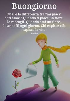 School Tomorrow, Someone Like Me, Foto Instagram, The Little Prince, Disney Quotes, Good Morning, Buddha, My Life, Thoughts