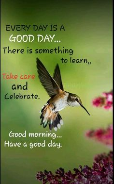 Good Morning Dear Friend, Good Morning Nature, Good Morning Images Hd, Cute Good Morning, Happy Monday Quotes, Happy Morning Quotes, Morning Greetings Quotes, Morning Inspirational Quotes, Good Morning Greeting Cards