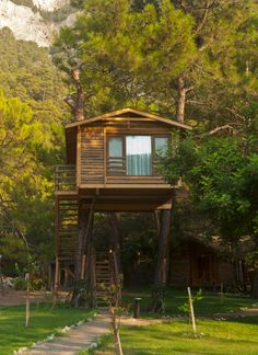 A tree house that could be for kids or adults.