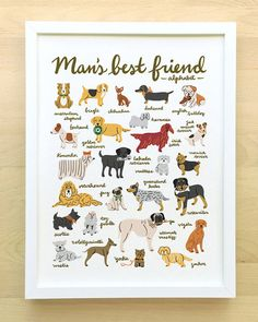 Man's Best Friend Dog Alphabet Poster from Little Low Studio - Dog Milk