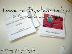 Mixing Playdough: Immune System {Free Printable}