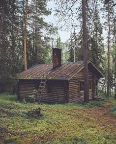 Browse through our collection of forest images and forest pictures. High quality pictures of forest and images of forest. All forest photos are royalty free. Small Log Cabin, Little Cabin, Log Cabin Homes, Cozy Cabin, Cottage Homes, Old Cabins, Cabins And Cottages, Rustic Cabins, Lost In The Woods