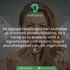 Psychology, Fun Facts, Touch, Quotes, Instagram, Alternative, Psicologia, Quotations, Funny Facts