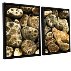 ArtWall Kevin Calkins Petoskey Stone Collage 2-Piece Floater Framed Canvas Set, Size: 32 x 48, Black