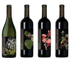 Vino Botánica: vino Sudafricano,Pinot Noir, Cabernet Sauvignon, Merlot y Burdeos aparecen representados con diferentes grabados de flores