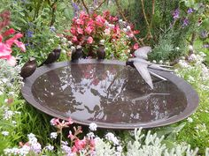 730_600mm-Swallow-Birdbath-Bowl