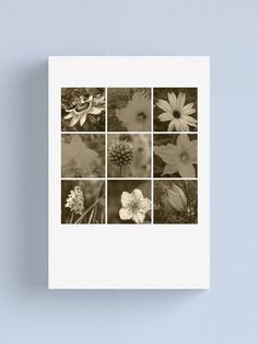 """""""Sepia flowers montage"""" Canvas Print by WiseDogDesigns 