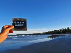 COLETIVO TRANSVERSO: Intervenções praianas - Bahia (Janeiro de 2013)
