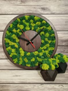 Wood eco clock with Iceland moss.