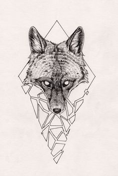 vintage wolf drawing - Google Search