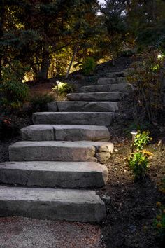 Residential Landscape and Outdoor Lighting Systems Backyard Walkway, Concrete Walkway, Stone Walkway, Garden Landscaping, Landscaping Ideas, Walkway Ideas, Stone Steps, Backyard Ideas, Outdoor Ideas
