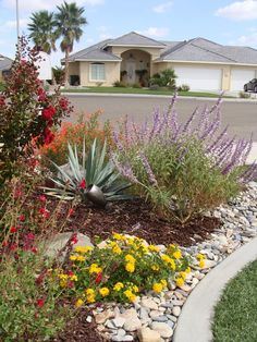 images about drought friendly yards on Pinterest
