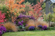 How to create a beautiful mass of perennials? - Planting shrubs in a perennial bed - Fall Vegetables To Plant, Cottage Garden Plants, Cottage Gardens, Balcony Garden, Planting Shrubs, Garden Design Plans, Flowers Perennials, Autumn Garden, Fall Flowers