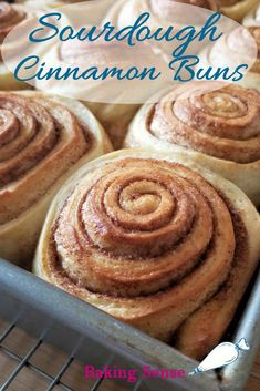 """These Sourdough Cinnamon Buns are the best cinnamon rolls ever! Make them overnight for fresh buns in the morning. There's a bonus """"sticky bun"""" layer at the bottom & cream cheese frosting on top. to bun roll cheese frosting Sourdough Cinnamon Rolls, Cinnamon Bun Recipe, Best Cinnamon Rolls, Sourdough Recipes, Sweet Sourdough Bread Recipe, Sourdough Pizza Dough Recipe, Sourdough Biscuits, Sourdough English Muffins, Dough Starter Recipe"""