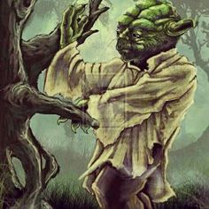 #yoda #wingchun may the force be with you.