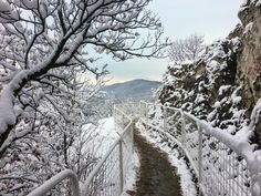 Hungary, Budapest, Snow, Nature, Travel, Outdoor, Viajes, Outdoors, Naturaleza