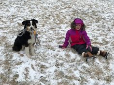 First Snow There can be no other reason for what we do here at HoneyCreek Aussies than the gratification we get from owners of our pupp. Australian Shepherds, Dog Bowls, Aussie Shepherd, Australian Shepherd, Australian Sheep Dogs