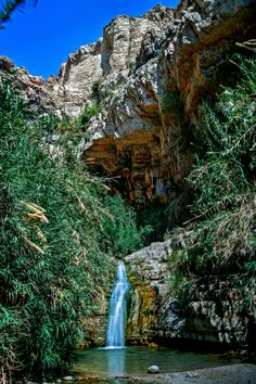 Volunteer's trip to King David Falls, Israel. Ein gedi - place of hiding when David fled from King Saul Oh The Places You'll Go, Places To Travel, Places To Visit, Voyage Israel, Heiliges Land, Destinations, Israel Travel, Israel Trip, Holy Land