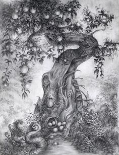 Dark fantasy and the strange beauty of natural forms are explored in gorgeous detail by Rachel M. Bray. We like the atmosphere she conjures up in these ink and pencil illustrations— very 'dark fair...