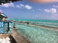 El acuario en la isla
