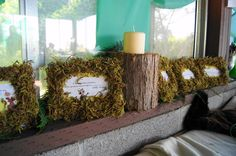 forest themed baby shower- picture frame trivia