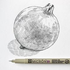 Ink Pen Art, Ink Pen Drawings, Drawing Skills, Drawing Techniques, Pen Sketch, Sketches, Hatch Drawing, Engraving Illustration, Cross Hatching