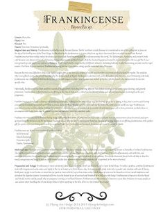 Herbarium: Magical and Medicinal Uses of Frankincense Altered State Of Consciousness, States Of Consciousness, Frankincense Resin, Frankincense Essential Oil, Herbal Magic, Magic Herbs, Magick, Pagan Witchcraft, Green Witchcraft