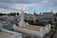 Most of the graves in St. Patrick's Number 1 are in-ground copings rather than the typical French-style tombs